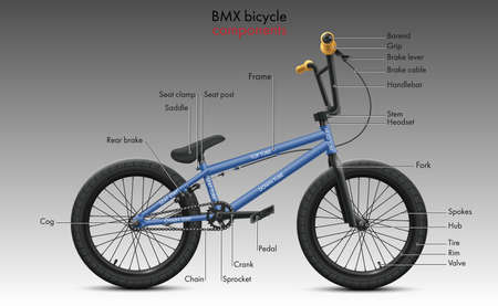 Labeled BMX bicycle components. Vector technical illustration shows a diagram of the bike parts and the structure of the tubular frame elements. Sports repair shop information poster