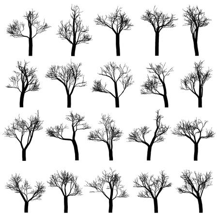 Ensemble de silhouettes d'arbres, éléments de dessin vectoriel dessinés à la main.