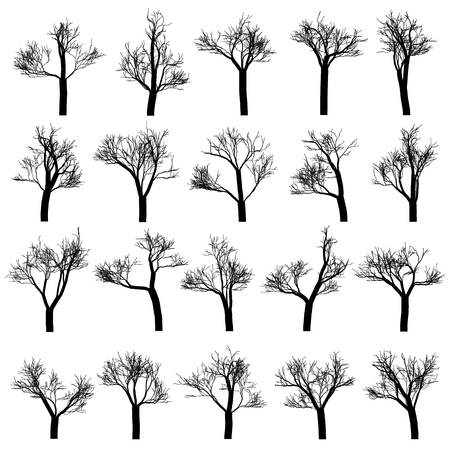 Set of tree silhouettes, hand drawn vector design elements.