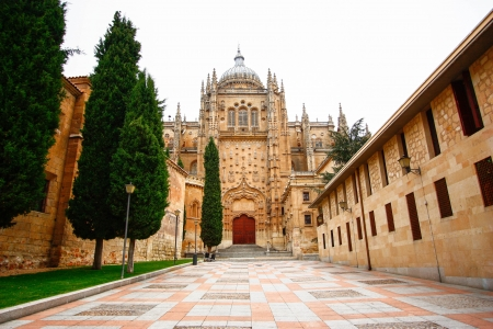Cathedral Vieja  Old Cathedral  , Salamanca