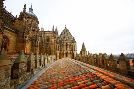 salamanca: Cathedral Vieja  Old Cathedral  , Salamanca