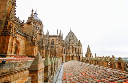 castile leon: SALAMANCA, SPAIN - Old Cathedral of Salamanca,Castile and Leon, Spain