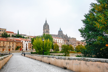 Panoramic view of the historic city of Salamanca with Rio Tormes and New Cathedral from Enrique Esteban bridge in Castilla y Leon region, Spain