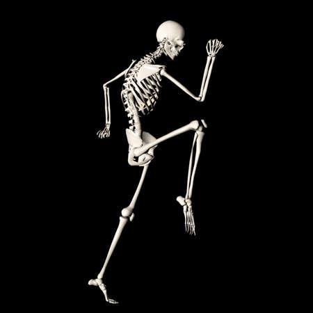 skelet 79 Stockfoto