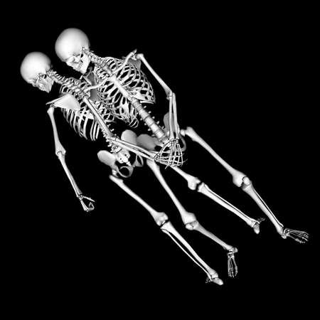 fibia: skeleton 90