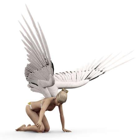 angel 162
