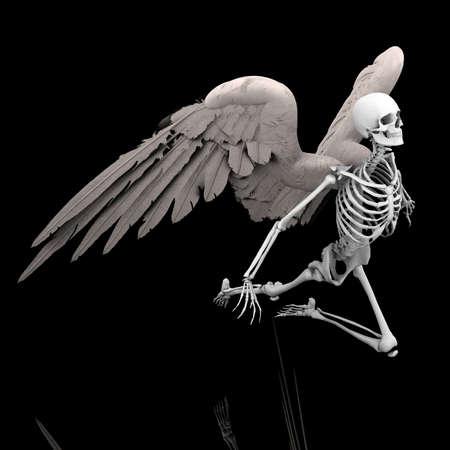 flight of death Stock Photo - 10758262