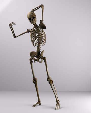 poser skeleton photo