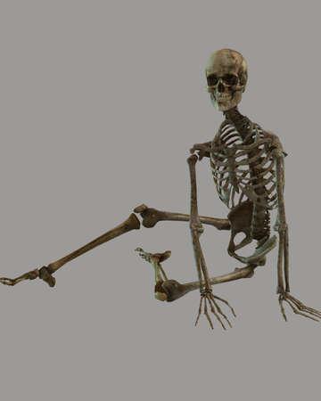 fallen skeleton photo