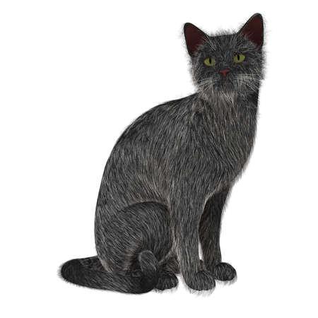 Sitting Cat Stock Photo