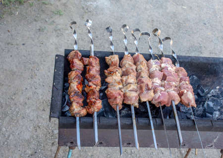 Cooking barbecue on the coals. Sunday picnic