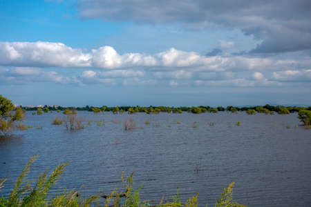 Russia, Khabarovsk. August 2019. Flooding on the Amur river.