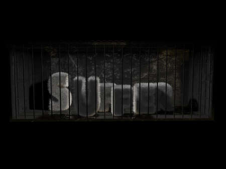 behind bars: a fluffy word with white hair behind bars with black background.