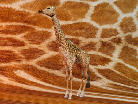 banding: Giraffe with same texture background Stock Photo
