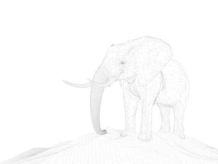 anima: 3d rendering of anima wireframel with white background