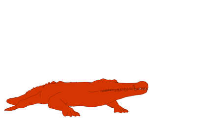 outlined crocodile isolated on white 3d rendering