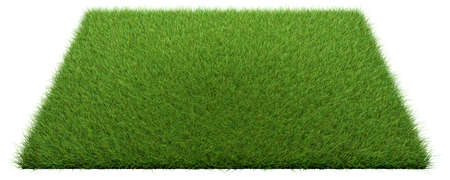 3d rendering of a grass patch isolated on white for architecture design or othe use Banco de Imagens