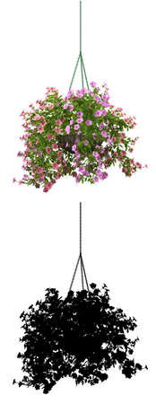 3d rendering of realistic flower pot on white with alpha mat