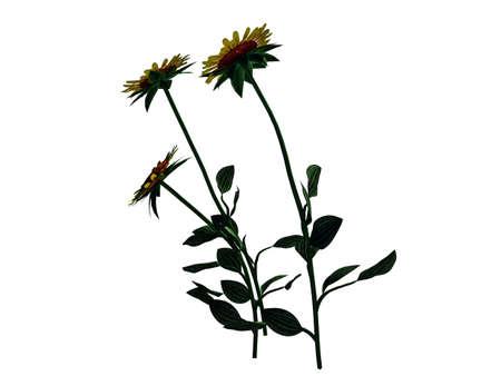 3D-Rendering von Blumen-Busch isoliert auf weiß kann für Vordergrund-Design verwendet werden Standard-Bild - 84818737