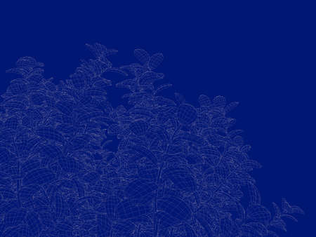 3d rendering of an outlined tree blueprint isolated on blue 3d rendering of an outlined tree blueprint isolated on blue background foto de archivo 84818797 malvernweather Gallery