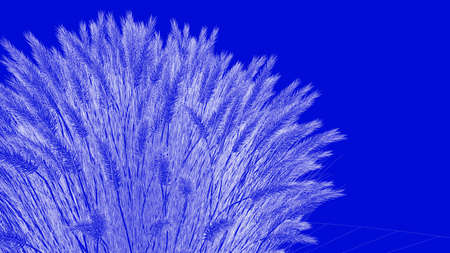 3d rendering of a white outlined tree on a blue background Stock Photo