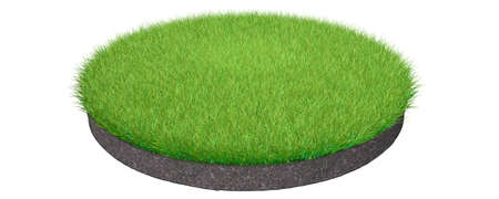 3d rendering of a grass patch isolated on a white background