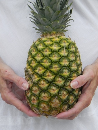 holding a pineapple