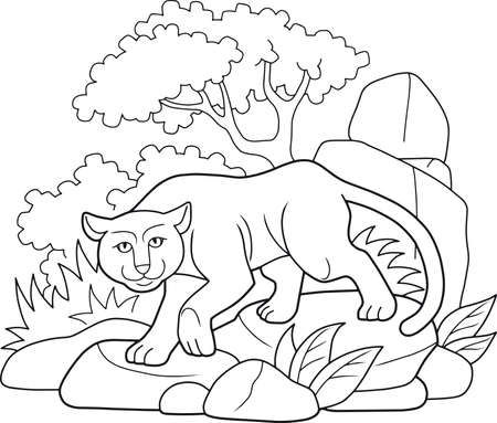 sneaks: panther sneaks in the jungle