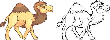 cartone animato carino cammello, illustrazione divertente libro da colorare