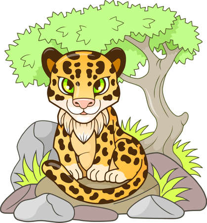 cartoon cute little leopard, design funny illustration