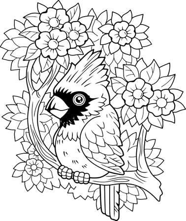 cartoon bird red cardinal, coloring book, cute illustration