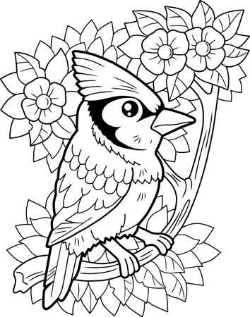 cartoon cute blue jay bird, coloring book, funny illustration