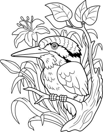 cartoon cute kingfisher bird, coloring book, funny illustration  イラスト・ベクター素材