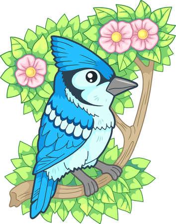 cartoon cute bird blue jay funny illustration