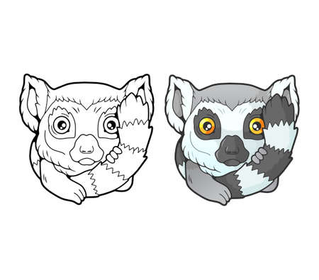 little cute lemur, coloring book, funny illustration