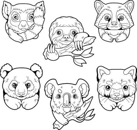 cartoon cute wild animals, funny images set 矢量图像