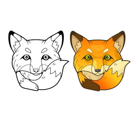 little cute fox, coloring book, funny illustration