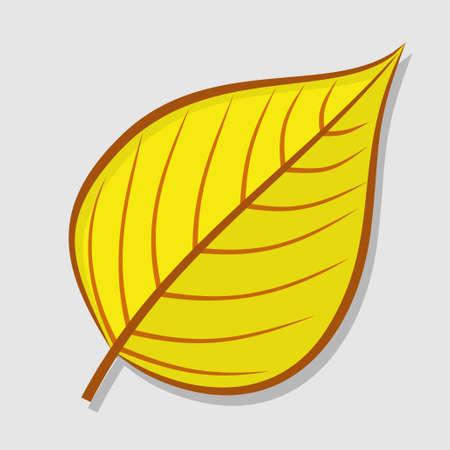 Linden autumn leaf isolated on a white background. Flat design Vector illustration