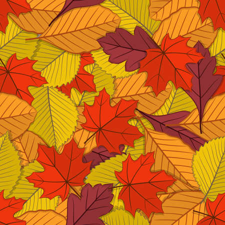 Autumn seamless pattern with fall leaves. Vector illustration Reklamní fotografie - 129267076