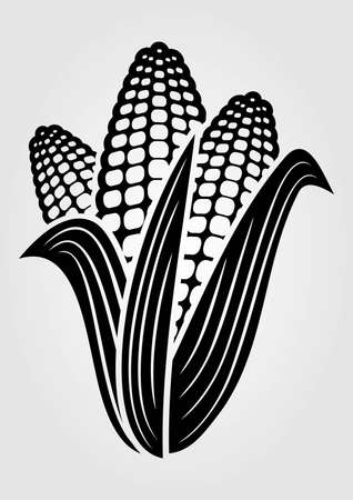 Corn icon isolated on white background. Vector illustration.