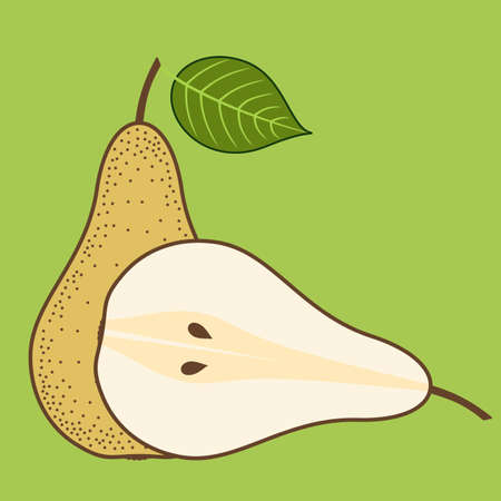 Fresh Pear isolated. Flat style vector illustration