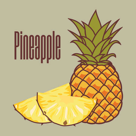 Pineapple with round slices isolated. Flat style vector illustration. Ilustrace