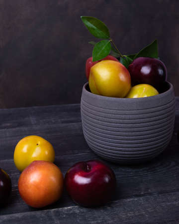 Colorful plums fruit in pot and plate on the black background isolated 免版税图像 - 156240297