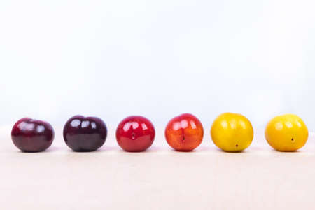 Red, yellow plum fruit close up on the white background isolated 免版税图像 - 156240331