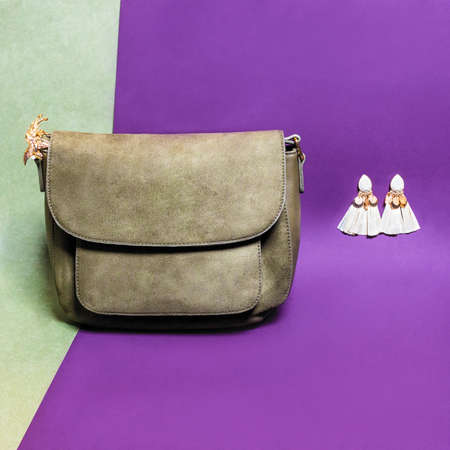 Leather color woman handbag with earrings isolated 免版税图像 - 156197321