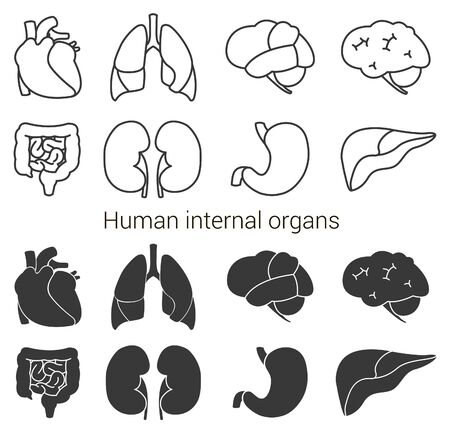 Human organs icon set. Vector illustration isolated on white background