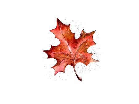 hand-drawn watercolor illustration. autumn leaf is orange. postcard decoration, Halloween attribute. isolated Stockfoto