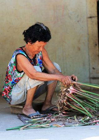 할머니는 농부 야. 그녀는 갈랑 갈 껍질을 벗겨 내고있어.