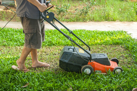 mow: A man mow grass at his backyard by lawn mower machine