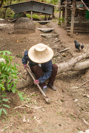 A farmer digging by spade, prepare to planting, traditional lifestyle of Thailand photo